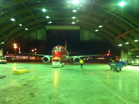 Norwegian Air Shuttle Boeing B737-800 Birdstrike