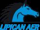 Lipican Aer logo